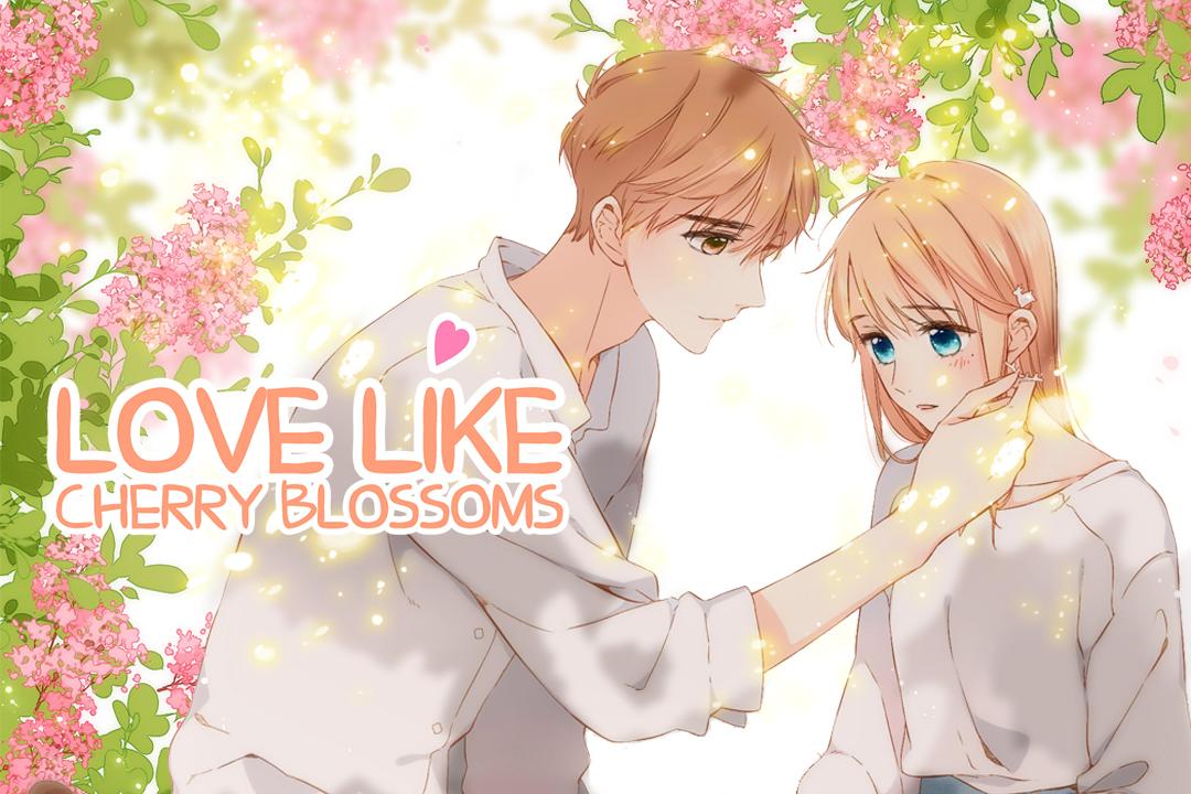 Love Like Cherry Blossoms